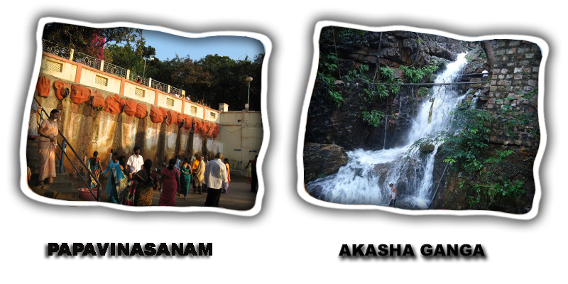 tirupati travel package